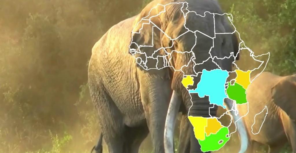 africa drone involvement