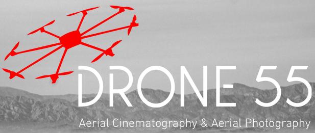 Drone 55 Logo - Image