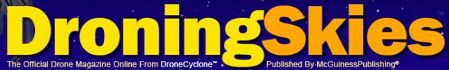 Droning Skies Logo - Image