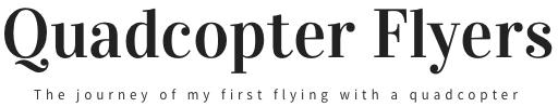 Quadcopter Flyers Logo - image