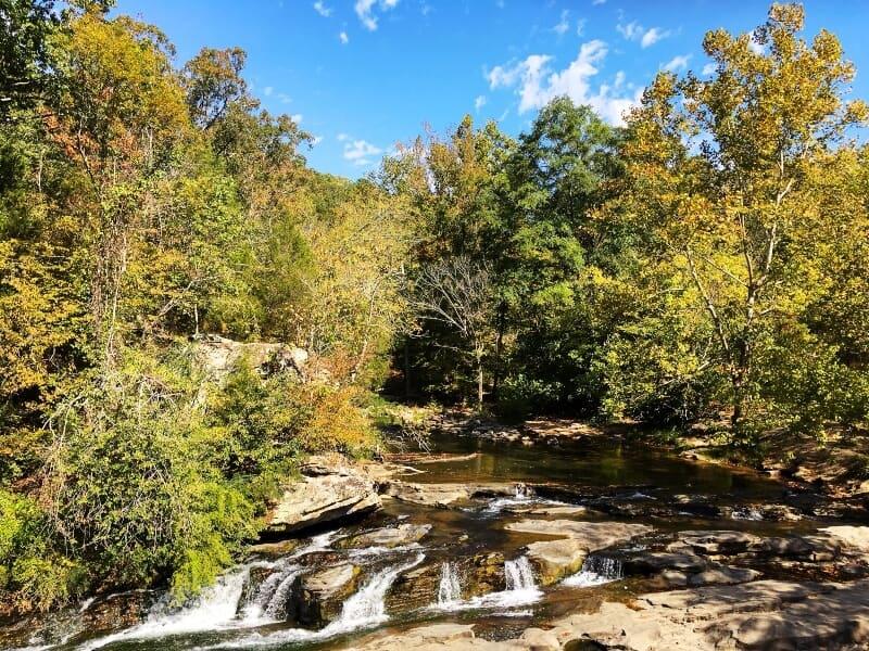fly drone Turkey Creek Nature Preserve